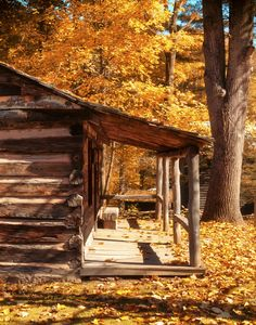 Log cabin in autumn, imagine the woodpile on that porch in the winter, lemonade shared in the summer, and bunnies hopping across it in the spring!