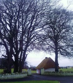 Traditional Irish thatch cottage, Trim, Co Meath