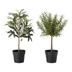 """Artificial plants & flowers - Plants, plant pots & stands - IKEA 13""""h"""