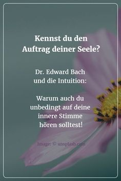 Listen to your inner voice – and get well. Edward Bach and the power of intuition - All About Health Intuition, Ear Reflexology, Scoliosis Exercises, Mind Thoughts, Life Rules, Chakra Meditation, Yoga Flow, Reiki, Good To Know