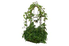 "19"" Live Ivy Rustica Birdcage by Fresh Topiary"