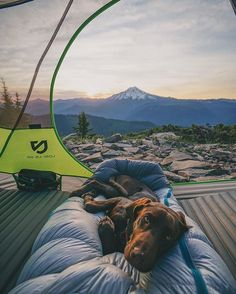This view doesn't get any better @nemoequipment 🏕⛰☀️