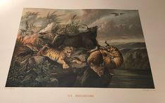 Litho : Painting by Raden Saleh.