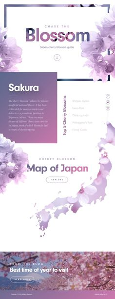 Cherry Blossom Landing Page Ui design concept by Nathan Riley @ Green Chamaleon.: Cherry Blossom Landing Page Ui design concept by Nathan Riley @ Green Chamaleon. Layout Design, Graphisches Design, Web Ui Design, Best Web Design, Web Layout, Design Ideas, Logo Design, Slide Design, Design Concepts