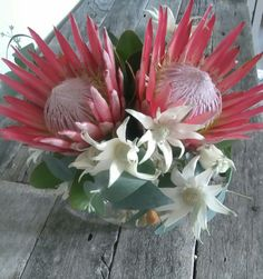 King proteas and flannel flowers in a fishbowl vase by RANE flowers