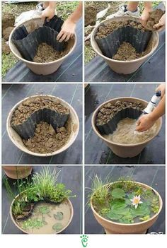 DIY miniature garden idea