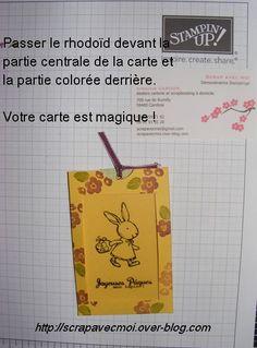 CARTE-MAGIQUE-020.JPG