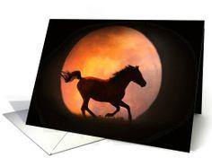 General Birthday card: horse and moon birthday greeting Greeting Card
