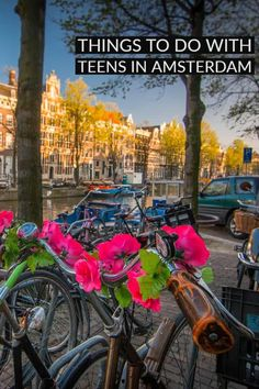 There are heaps of things to do in Amsterdam with teenagers. From History and Culture to fun and food. Amsterdam attractions are everywhere. Amsterdam Places To Visit, Amsterdam Things To Do In, Amsterdam With Kids, Amsterdam City, Amsterdam Travel, Travel Tours, Travel Destinations, Travel With Kids, Family Travel