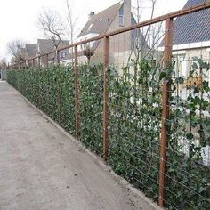Garden Design Layout - New ideas Garden Trellis, Garden Fencing, Garden Planters, Fence Landscaping, Backyard Fences, Landscape Design, Garden Design, Garden Screening, Balcony Plants