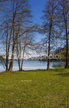 #Lake #Woerth #View To #MariaWoerth Through The #Trees In #Spring @depositphotos #depositphotos @carinzia @meinwoerthersee #ktr15 #nature #landscape #woerthersee #carinthia #austria #travel #holiday #vacation #season #summer #spring #stock #photo #portfolio #download #hires #royaltyfree