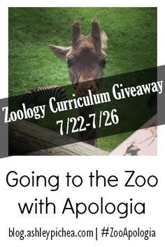 Enter to win a set of Zoology curriculum (textbook, notebooking journal, and mp3) from Apologia!! #zooApologia #giveaway [ends 7/26]