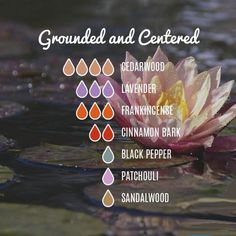 oil photography Grounding Blends– Essentially You Oils Grounding Mixtures - Your Essential Oils Grounding Essential Oil, Essential Oil Chart, Essential Oil Scents, Essential Oil Perfume, Essential Oil Diffuser Blends, Young Living Essential Oils, Doterra Essential Oils, Wellness, Perfume Recipes