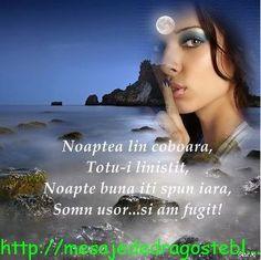 Good Night, Movies, Movie Posters, Pictures, Nighty Night, Films, Film Poster, Cinema, Movie