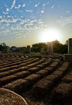 Arena della balle di paglia 2012 (Flickr @Ravennanotizie)