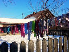 https://flic.kr/p/qqyAfk | Paltinoasa  - Jud. Suceava  - Romania  - 2014