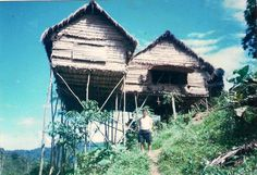 For the poor people they cannot afford to make a house. They moved further from the road, almost near the jungle. They have no transport, so they just clear the...
