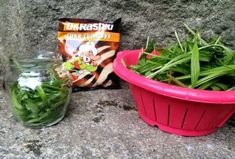 Jitrocelový sirup je skvělý pomocník, který oceníte během celého roku. Plants, Syrup, Planters, Plant