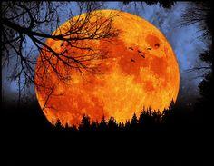 gorgeous moon!
