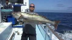 Great catch on board Thunderbird! Get your $99 overnight trip reserved today!
