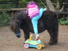 how cute!!!  And the pony is so patient.