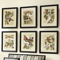 S.R. Gambrel – The Hamptons One of the things that always seems so seasonal appropriate this time of year, is decorating with botanical prints. It's just Spring to me. Whether it be with a rare antique flower collection, displays ofnature, or a specimen collection such as butterflies or cocoons. The look & feel of decorating …