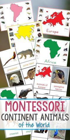 Montessori Animals and Continents Printables and Activities Montessori Kindergarten, Montessori Science, Montessori Homeschool, Maria Montessori, Preschool Curriculum, Preschool Learning, Preschool Activities, Homeschooling, Continents Activities