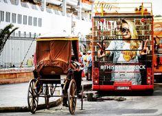 #transport #tourist #tourism #bus #horse #contrast #malta #valetta #maltaphotography #visitmalta #hiddenmalta #lovemalta #canonphotography #canon_photos #canon #picture #moment #picoftheday #photooftheday #travel #trip #createexploretakeover #aroundtheworld #photography #photo #explore