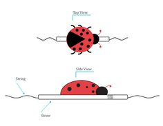 Ladybug Tightrope Racers   Teaches students air pressure/measurement