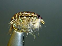 Freshwater Shrimp with the new Gammarus Foil by Pro Sportfisher – Step By Step | The One Fly