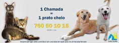 União Zoófila - Ajuda e Protecção aos Cães e Gatos Abandonados