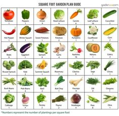 Gardening Compost how many vegetable plants in one square foot garden square can you plant? this handy sheet will give you the knowledge - Square Foot Gardening 101 - What it is Vegetable Garden Planner, Raised Vegetable Gardens, Veg Garden, Edible Garden, Beginner Vegetable Garden, Spring Vegetable Garden, Vegetable Gardening, Small Home Vegetable Garden Ideas, Small Raised Garden Ideas