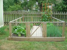 Dog-proof veggie garden! I want to do this..