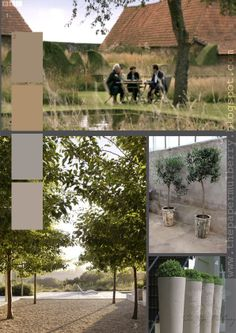 1.image of Le Jardin Plume in Normandy France from the programme with Monty Don taken from the BBC iplayer 2.colour palette suggestion by The Paper Mulberry 3.half standard olive trees in vintage pots from the great garden blog Slottstradgarden Ulriksdal 4.Tall contemporary plant pots by Atelier Veirkant 5.the sublime landscape designs of Andrea Cochran.