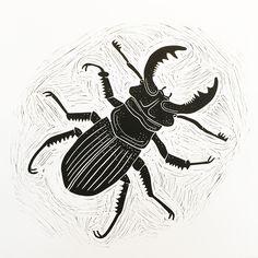 Stag Beetle - lino print - Ben Dickson, U.K.
