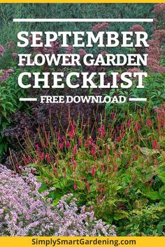 Discover what you need to do in your flower garden this September. Download my free flower garden printable checklist and you'll get a list of everything you need to do this month. It includes tasks for your annual