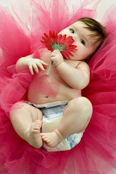 anne geddes photography | Anne Geddes baby | Flickr - Photo Sharing!