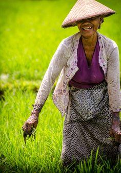 Rice Farmers, Bali, Indonesia