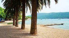 PLAŽA ZMIJICE - Herceg Novi Plaža zmijice je javna plaža. Dugačka je 150 m, i proteže se na površini od 1200 m2. Srednje sitan pijesak, kompletno opremljena. Nalazi se u Zelenici.  www.montenegro-novi.com Solila bb, Igalo,  Herceg Novi (pored terena FK Igalo) Telefon recepcije: +382 31 331 630 +382 69 150 481  noviapart@gmail.com #Montenegro #CrnaGora #noviapartments #HercegNovi #Igalo