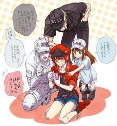 @_@ 1/2 Baka To Test, Blood Anime, Barakamon, Red Blood Cells, Hyouka, Short Comics, Angel Of Death, Cute Anime Couples, Human Body