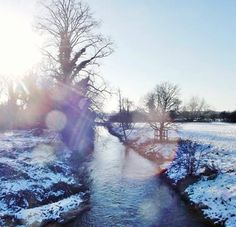 Seasons project #winter #photography