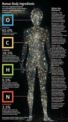 Human Body Ingredients | Biology, Campbell and Reece, http://www.aquamiracles.com