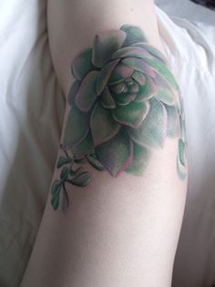 gorgeous colored succulent plant knee tattoo