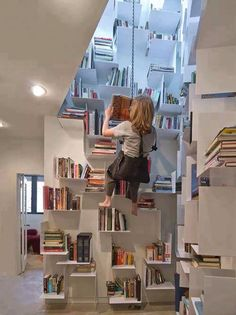 Custom Home Library - I love the harness to get to the high books ;)