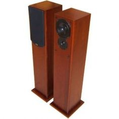 Audiogem Emerald. In the office. Seriously fun loudspeaker with 1/4 wave folding. I had input into the design of these. No longer available.