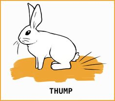 What is that silly rabbit trying to tell me? With an illustrated guide to help you learn about your silly bunny. Rabbit Run, Silly Rabbit, Pet Rabbit, Pet Bunny Rabbits, Large Rabbits, Bunnies, Prey Animals, Cute Animals, Rabbit Facts