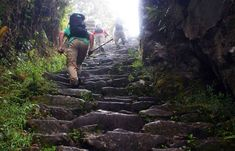 The Inca Trail - trekking routes to Machu Picchu Machu Picchu, Trekking, Peru, Trail, World, Turkey, The World, Hiking