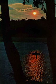 endlessme:    National Geographic, 1966    There are things that are too beautiful not to be rebloged