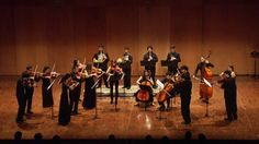 Orquestra de Cambra del Penedès. Auditori de Vilafranca del Penedès. 26 de gener de 2014 Lorenzo Coppola, direcció musical. VIdeo & Audio by Joan Montserrat Audiovisuals.