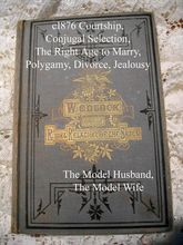 1876 Wedlock Marriage Book The Right Relations of the Sexes Fowler Who May and May Not Marry Sex Marriage Etiquette